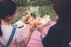 Ami deux appréciant le pique-nique tout en buvant d'un jus d'orange sur le résumé Image stock