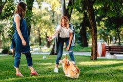 Ami deux f?minin dans le jeu de parc avec peu de chien photos stock