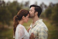 Ami embrassant l'amie sur le champ à la ferme olive Photo libre de droits