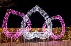Ami i cuori, notte delle illuminazioni di notte stellata del parco di Duryu a Daegu Corea del Sud Immagini Stock Libere da Diritti