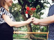 Ami offrant à son amie par groupe de roses en parc Photographie stock libre de droits