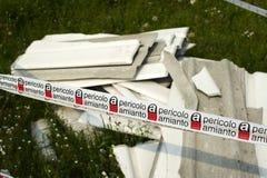Amiantus Photographie stock