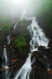 amicalola понижается вода стоковое фото rf