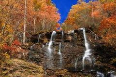 Amicalola Falls in autumn Royalty Free Stock Image