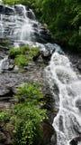 Amicalola tombe nord Georgia Mountains de cascade Photographie stock libre de droits
