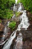 Amicalola Wasserfall Lizenzfreies Stockbild