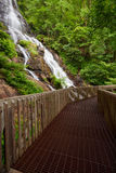 Amicalola Waterfall Royalty Free Stock Photos
