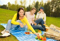 Amici al picnic Fotografie Stock