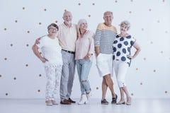 Amici anziani di infanzia fotografia stock libera da diritti