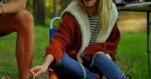 Amici che arrostiscono caramella gommosa e molle su fuoco di accampamento 4k archivi video