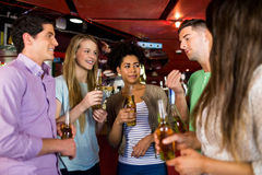 Amici che bevono birra Immagine Stock