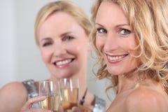 Amici che celebrano Immagini Stock