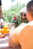 Amici che godono del giorno di picnic Immagine Stock Libera da Diritti