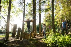 Amici che guardano il ponte di ceppo dell'incrocio della donna in foresta Fotografie Stock Libere da Diritti