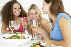 amici che hanno distensione domestica del pranzo Immagine Stock Libera da Diritti