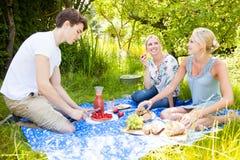 Amici che hanno un picnic fotografia stock