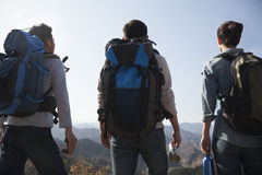 Amici che si preparano per il viaggio Fotografie Stock Libere da Diritti