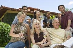 Amici con i bicchieri di vino Immagini Stock