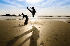 Amici di combattimento fotografia stock libera da diritti