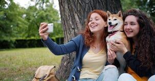 Amici di ragazze felici che prendono selfie in parco con il cane sveglio facendo uso della macchina fotografica dello smartphone archivi video
