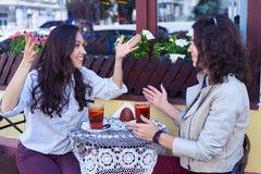 Amici emozionali che discutono a fondo tazza di tè Fotografia Stock Libera da Diritti