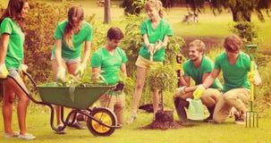 Amici felici che fanno il giardinaggio per la comunità video d archivio