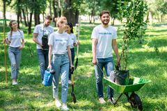 amici felici che si offrono volontariamente e che piantano gli alberi fotografie stock libere da diritti