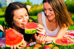 Amici felici sul picnic sul prato inglese Fotografie Stock