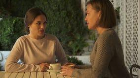 Amici femminili emozionali che discutono in caffè, avendo malinteso e lotta stock footage