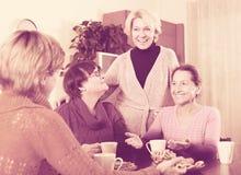 Amici femminili sul terrazzo di estate Fotografia Stock