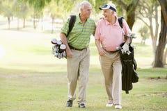 Amici maschii che godono di un gioco di golf Fotografie Stock