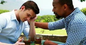 Amici maschii che si interagiscono in ristorante all'aperto 4k video d archivio
