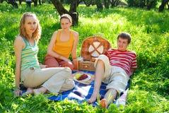 Amici sul picnic Fotografia Stock