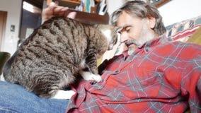 Amicizia dell'uomo e del gatto archivi video