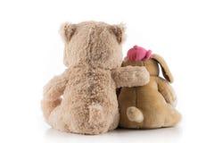 Amicizia fra il cane e l'orso Immagini Stock