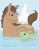 Amico del pesce e del cavallo Immagini Stock Libere da Diritti