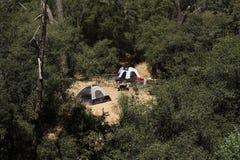 amid för lokaltents för läger set trees upp Royaltyfri Bild