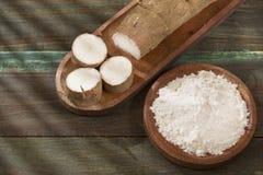 Amido di manioca - Manihot esculenta fotografia stock