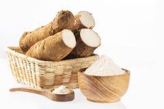 Amidon de manioc cru - Manihot esculenta Fond blanc photos stock