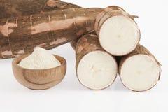Amidon de manioc cru - Manihot esculenta Sur le fond blanc photographie stock