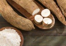 Amidon de manioc - Manihot esculenta photographie stock