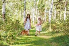 Amie de deux filles marchant dans les bois avec son Spitz aimé d'animal familier Photo libre de droits
