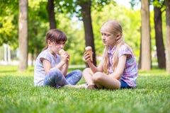 Amie de petite fille sur la pelouse Image stock