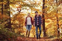 Amie et ami marchant en parc Image libre de droits