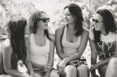 Amie heureux parlant sur le vert d'été Image stock