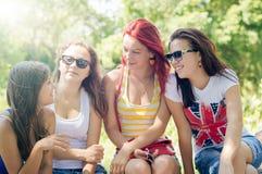 Amie heureux parlant sur le vert d'été Photographie stock