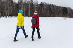 Amie sportive en bois d'hiver Photographie stock libre de droits