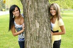Amie sur un arbre Photographie stock