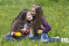 Amie sur une pelouse verte Photo libre de droits