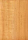 Amieiro (textura de madeira) Fotos de Stock Royalty Free